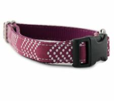 Raspberry Splash Chevron Bow Tie Dog Collar