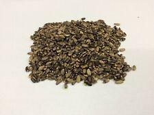Milk Thistle Seeds Liver Detox A Grade Premium Quality Free UK P&P