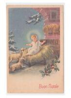Non Viaggiata cartolina di Buon Natale vintage Gesù Bambino pecore agrifoglio