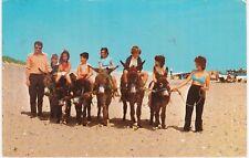 Beach Donkeys, HEMSBY, Norfolk