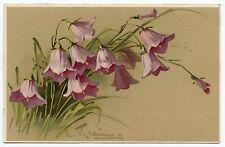 C. KLEIN . Jolies  Fleurs . Flowers .