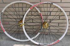 ALEX DP20 Novatec Disc wheelset WHEEL SET GOLD  WHITE MTB 26INCH