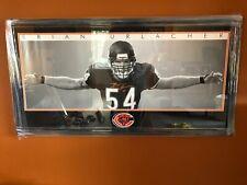 Brian Urlacher Chicago Bears Cust Framed Autographed 22x44 Bear Hug Beckett COA