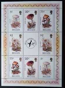 Belize Scott #843, 845, 847, 850 Souvenir Sheet of 2 Each, Mint OG Never Hinged