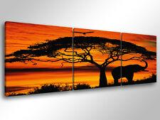 Quadro Moderno 3 pz.  AFRICAN SUNSET - cm 150x50 arredamento stampa su tela