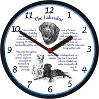 Labrador Retriever Large Wall Clock - Dog Breed Origins Animal Facts