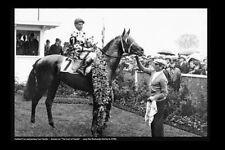 GALLANT FOX 1930 Triple crown USA race horse modern Digital Photo Postcard