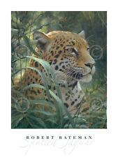 LEOPARD ART PRINT Symbol of the Rainforest detail by Robert Bateman 32x24 Poster