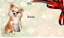 Chihuahua Long Coat Dog Self Adhesive Gift Labels by Starprint