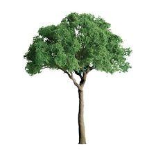 "JTT SCENERY 94283 PROFESSIONAL SERIES 3/4"" GREEN JACARANDA TREE  6/PK   Z-SCALE"