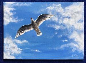 """ Sea gull"" Seattle Bird Acrylic  Fine Art Original"