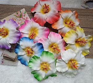HAARBLUME Rockabilly Hibiscus XL Haarblüte PIN UP  Krokodilspange-20 Farben
