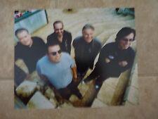 Los Lobos Color 8x10 Photo Music Promo #2