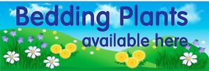 Bedding Plants available here PVC Banner 1008