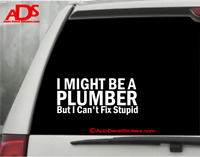 YOU CAN/'T FIX STUPID FUNNY DECAL STICKER ART CAR WALL