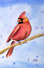 "Red Cardinal Bird  Watercolor Painting  ORIGINAL Wildlife Winter 4"" x 6"""