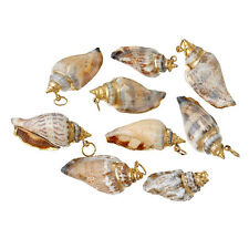 Shell Charm Pendants Conch Natural Gold Plated 5 PCs DIY Jewellery Crafts