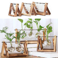Transparent Plant Terrarium with Wooden Stand Glass Vase Holder Home Office Deco