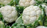 CAULIFLOWER SEED, SNOWBALL Y, HEIRLOOM, ORGANIC, NON GMO, 25+ SEEDS, GARDEN SEED