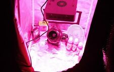 LED Grow Tent kit, a LED completo sistema di coltivazione indoor, Indoor LED GROW SISTEMA