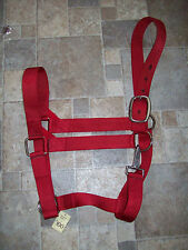 """Draft Horse Nylon Halter 1 1/2"""" double stitched Red nylon Made in Usa"""