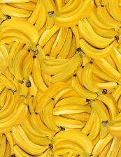 Timeless Treasures Farm Stand Fruit Bananas