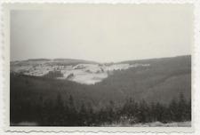 45/181  FOTO BLICK AUF SCHELLERHAU 1957