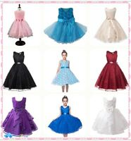 Flower Girl Princess Pageant Wedding Party Formal Gown Kid Baby Lace Tutu Dress