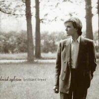 David Sylvian - Brilliant Trees (NEW CD)