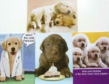 PUPPY THEMED BIRTHDAY CARD Recycled Paper Greetings RETRIEVER & LABRADOR LAB DOG