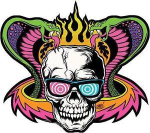 Mind Melt Skull STICKER Decal Dirty Donny Psychedelic Glasses Flaming Cobra DD68