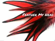 10 Pc Whiting Red Laced Feahter Hair Extensions With Fluff 5 to 7 Inches Long