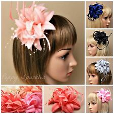 Flower Feather Beaded Facinators Choice of Colours- Hair Clip Wedding Prom Ascot