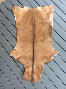 Luxury Skin Rug Pelt Hide Leather Brown 100x60cm Tan