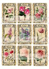 9 x Cottage Garden vintage Blumen auf A 4 Wasserschiebefolie Decal  Abziehbild