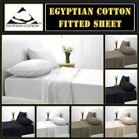 Egyptian Cotton Fitted Sheets 200 Thread Count Percale Bed Sheets All Sizes