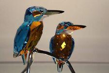 Swarovski SCS Crystal Paradise Silver Lake Kingfishers Blue Turquoise 945090