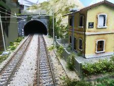 Plastico Ferroviario Diorama H0