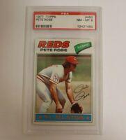 1977 Topps Pete Rose PSA 8 Cincinnati Reds PSA 8