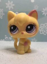 Littlest Pet Shop Authentic # 2512 Yellow Pink Baby Kitten Cat Standing Up