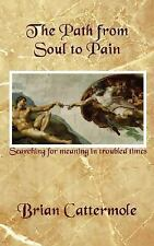 The Path from Soul to Pain : Search for Meaning in Troubled Times by Brian...