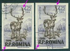 1956 Red Deer,Cervus Elaphus,Rothirsch,Romania,M.1625,IMPERF,Variety/error,VFU