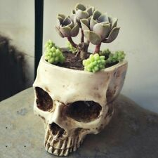 Human Skull Head Design Flower Pot Planter Container Craft ornaments Home Decor