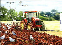 RED TRACTOR PLOUGHING   BIRTHDAY  CARD
