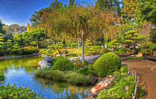 Framed Print - Lush Green Japanese Garden (Picture Asian Chinese China Japan)