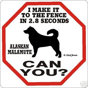 Alaskan Malamute 2.8 Fence Dog Sign