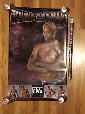 VINTAGE DENNIS RODMAN POSTER 1999 LJN HASBRO WRESTLING WCW NWO WWE WWF NXT NBA