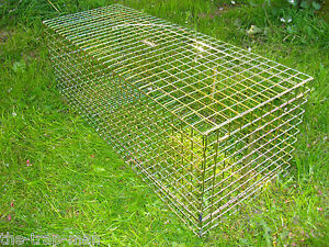 CAT TRAP UK made CHOICE by TrapMan UK quality CAT traps FERAL TNR wire mesh