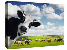 Funny Rural Cow Box Canvas wall art print picture - All sizes available