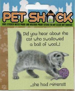 """PET SHACK - """"TABBY"""" CAT/KITTEN/STICKER - FREE UK POSTAGE"""